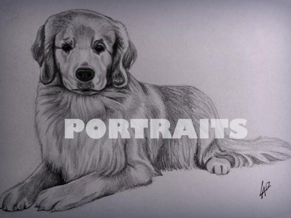 <span>Portrait Art Portfolio</span><i>→</i>