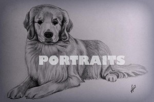 features-portraits2